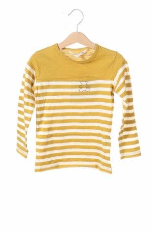 Bluză de copii Lulu Castagnette, Mărime 5-6y/ 116-122 cm, Culoare Galben, Bumbac, Preț 26,84 Lei