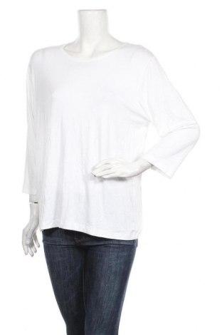 Γυναικεία μπλούζα Malva, Μέγεθος L, Χρώμα Λευκό, 92% βισκόζη, 8% ελαστάνη, Τιμή 6,17€