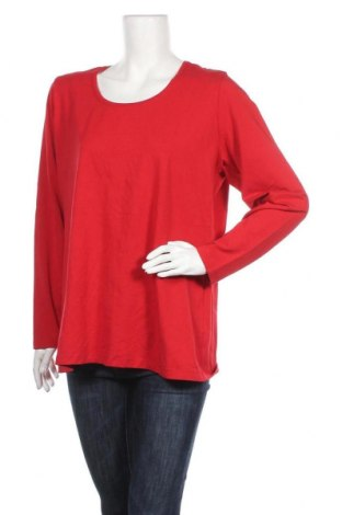 Γυναικεία μπλούζα Miss Etam, Μέγεθος XXL, Χρώμα Κόκκινο, 47% βαμβάκι, 47% μοντάλ, 6% ελαστάνη, Τιμή 6,79€
