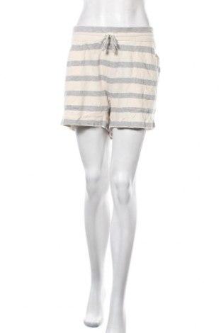 Γυναικείο κοντό παντελόνι Trenery, Μέγεθος XXL, Χρώμα Γκρί, Βαμβάκι, Τιμή 11,04€