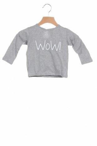 Παιδική μπλούζα Little Celebs, Μέγεθος 9-12m/ 74-80 εκ., Χρώμα Γκρί, Βαμβάκι, Τιμή 6,86€