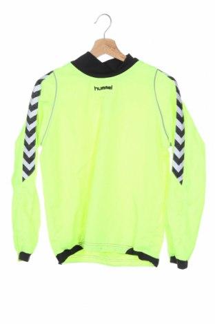 Παιδικό αθλητικό μπουφάν Hummel, Μέγεθος 11-12y/ 152-158 εκ., Χρώμα Πράσινο, Πολυεστέρας, Τιμή 10,91€