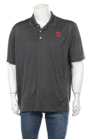 Ανδρικό t-shirt Adidas, Μέγεθος XXL, Χρώμα Γκρί, Πολυεστέρας, Τιμή 17,28€