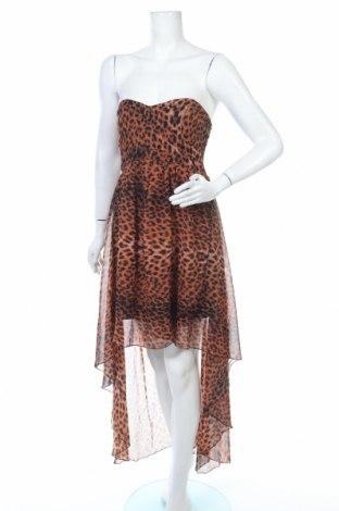 Φόρεμα Ax Paris, Μέγεθος L, Χρώμα Πολύχρωμο, Πολυεστέρας, Τιμή 20,46€