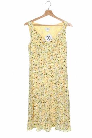 Φόρεμα Loft By Ann Taylor, Μέγεθος XS, Χρώμα Πολύχρωμο, Βισκόζη, Τιμή 27,77€