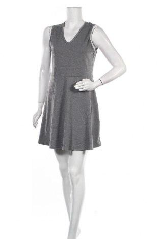 Φόρεμα Poof, Μέγεθος XL, Χρώμα Γκρί, 88% πολυεστέρας, 9% βισκόζη, 3% ελαστάνη, Τιμή 11,40€