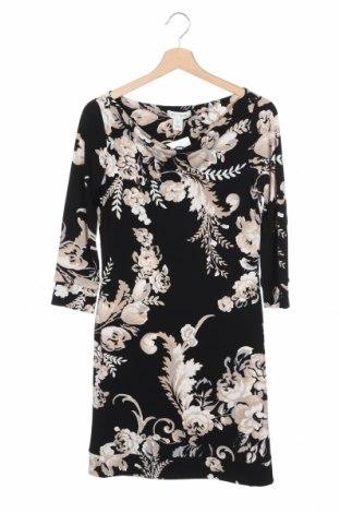 Φόρεμα White House / Black Market, Μέγεθος XS, Χρώμα Πολύχρωμο, Τιμή 10,13€