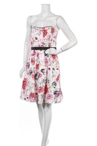 Φόρεμα White House / Black Market, Μέγεθος M, Χρώμα Πολύχρωμο, 96% βαμβάκι, 4% ελαστάνη, Τιμή 29,32€