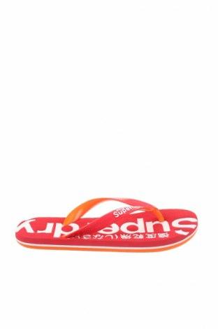 Papuče Superdry
