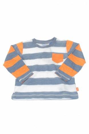 Детска блуза Chicco