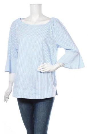 Γυναικεία μπλούζα Betty Barclay, Μέγεθος XL, Χρώμα Μπλέ, 75% βαμβάκι, 23% πολυαμίδη, 2% ελαστάνη, Τιμή 10,81€