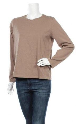 Дамска блуза Blue Illusion, Размер XL, Цвят Бежов, 95% памук, 5% еластан, Цена 16,96лв.