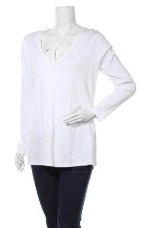 Дамска блуза Crossroads, Размер XL, Цвят Бял, Памук, Цена 19,95лв.