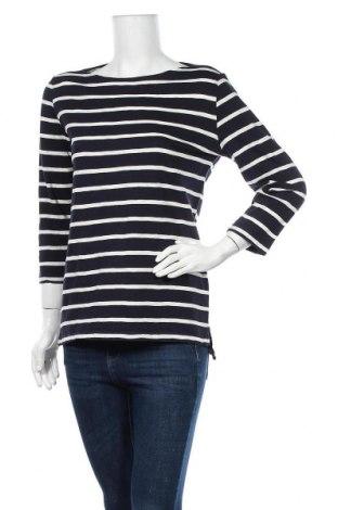 Γυναικεία μπλούζα Kate Storm, Μέγεθος M, Χρώμα Μπλέ, Τιμή 8,64€
