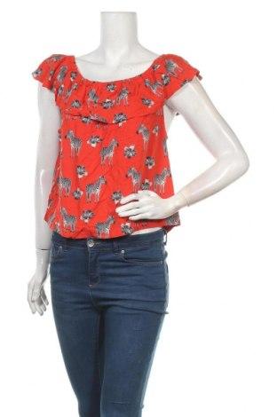 Γυναικεία μπλούζα Red Herring, Μέγεθος XL, Χρώμα Πολύχρωμο, Τιμή 3,86€