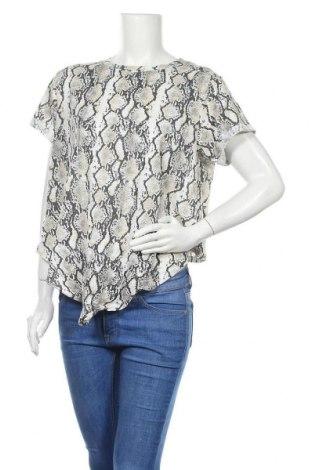 Γυναικεία μπλούζα Supre, Μέγεθος XL, Χρώμα Πολύχρωμο, 60% βαμβάκι, 40% πολυεστέρας, Τιμή 16,01€