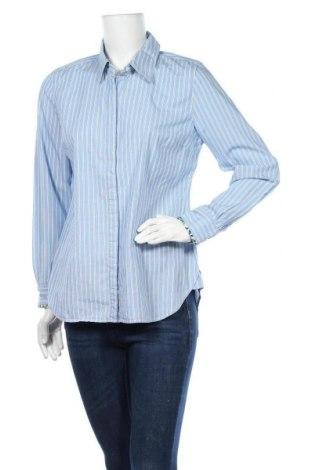 Дамска риза Charter Club, Размер L, Цвят Син, 97% памук, 3% еластан, Цена 16,96лв.