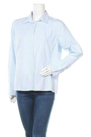 Дамска риза Marco Pecci, Размер XL, Цвят Син, Памук, Цена 16,96лв.