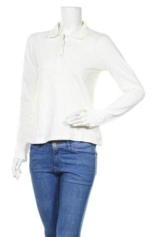 Γυναικεία αθλητική μπλούζα Golfino, Μέγεθος M, Χρώμα Λευκό, Τιμή 12,86€
