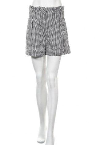 Γυναικείο κοντό παντελόνι Motivi, Μέγεθος S, Χρώμα Μαύρο, Τιμή 11,04€