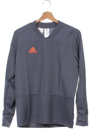 Παιδική μπλούζα αθλητική Adidas, Μέγεθος 13-14y/ 164-168 εκ., Χρώμα Γκρί, Πολυεστέρας, Τιμή 26,68€