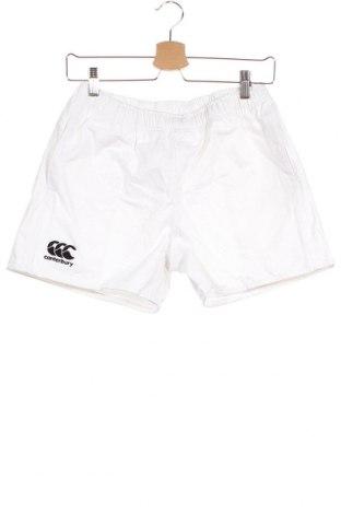 Παιδικό κοντό παντελόνι Canterbury, Μέγεθος 13-14y/ 164-168 εκ., Χρώμα Λευκό, Βαμβάκι, Τιμή 1,59€