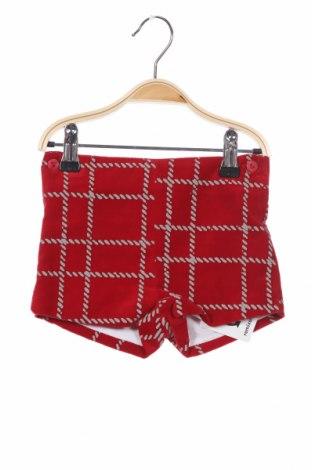 Детски къс панталон Foque, Размер 9-12m/ 74-80 см, Цвят Червен, Памук, Цена 13,68лв.