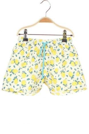 Παιδικό κοντό παντελόνι Little Celebs, Μέγεθος 2-3y/ 98-104 εκ., Χρώμα Πολύχρωμο, Πολυεστέρας, Τιμή 8,77€