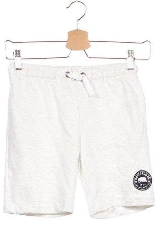 Детски къс панталон Soulcal & Co, Размер 7-8y/ 128-134 см, Цвят Сив, 100% памук, Цена 24,00лв.
