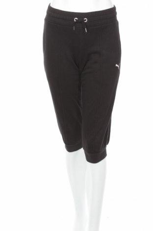 Damskie spodnie sportowe Puma