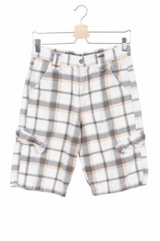 Детски къс панталон Dognose