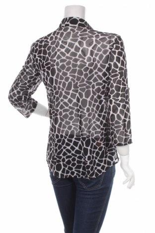 Γυναικείο πουκάμισο Eden & Olivia, Μέγεθος S, Χρώμα Μαύρο, 92% πολυεστέρας, 8% ελαστάνη, Τιμή 14,23€