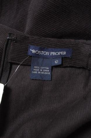 Пола Boston Proper