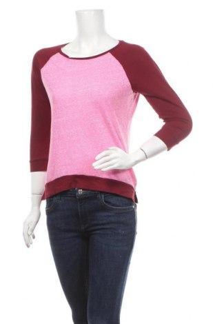 Γυναικεία μπλούζα American Eagle, Μέγεθος XS, Χρώμα Ρόζ , 55% βαμβάκι, 45% πολυεστέρας, Τιμή 11,69€