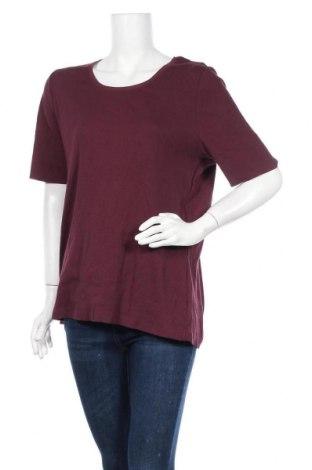 Γυναικεία μπλούζα Charles Vogele, Μέγεθος XXL, Χρώμα Βιολετί, 95% βαμβάκι, 5% ελαστάνη, Τιμή 4,55€