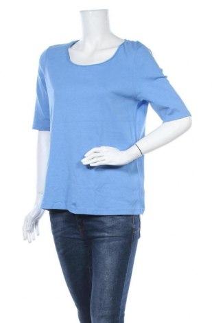 Γυναικεία μπλούζα Christian Berg, Μέγεθος XXL, Χρώμα Μπλέ, Βαμβάκι, Τιμή 9,38€