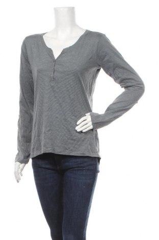 Дамска блуза Colours Of The World, Размер M, Цвят Сив, Памук, Цена 14,18лв.