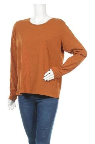 Γυναικεία μπλούζα Cubus, Μέγεθος XXL, Χρώμα Καφέ, 95% βαμβάκι, 5% ελαστάνη, Τιμή 10,49€