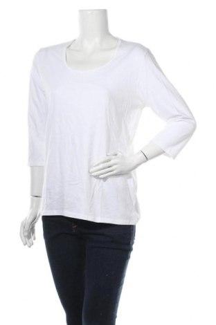 Γυναικεία μπλούζα Gina Benotti, Μέγεθος L, Χρώμα Λευκό, Βαμβάκι, Τιμή 11,69€