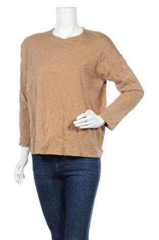 Γυναικεία μπλούζα J.Jill, Μέγεθος L, Χρώμα Καφέ, 55% βαμβάκι, 39% μοντάλ, 6% ελαστάνη, Τιμή 7,31€