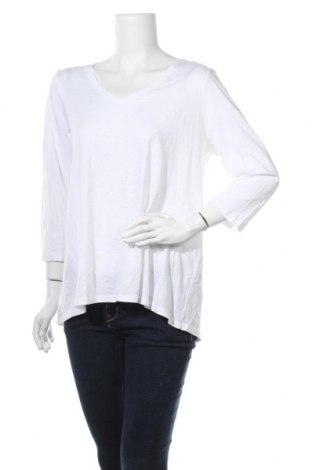 Γυναικεία μπλούζα J.Jill, Μέγεθος L, Χρώμα Λευκό, 60% βαμβάκι, 40% μοντάλ, Τιμή 8,83€