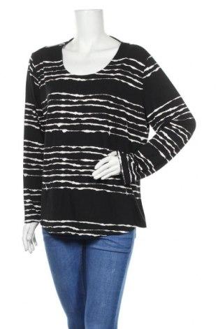 Γυναικεία μπλούζα Kenny S., Μέγεθος XL, Χρώμα Μαύρο, 94% βισκόζη, 6% ελαστάνη, Τιμή 8,83€