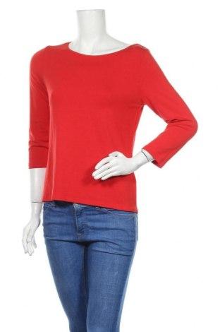 Γυναικεία μπλούζα Madeleine, Μέγεθος M, Χρώμα Κόκκινο, 95% βισκόζη, 5% ελαστάνη, Τιμή 8,18€