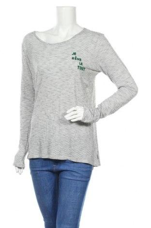 Γυναικεία μπλούζα Maison Scotch, Μέγεθος M, Χρώμα Γκρί, 67% μοντάλ, 33% βαμβάκι, Τιμή 21,38€