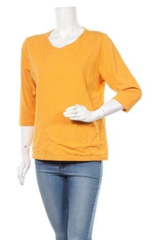 Γυναικεία μπλούζα Michele Boyard, Μέγεθος L, Χρώμα Κίτρινο, Βαμβάκι, μοντάλ, Τιμή 11,04€