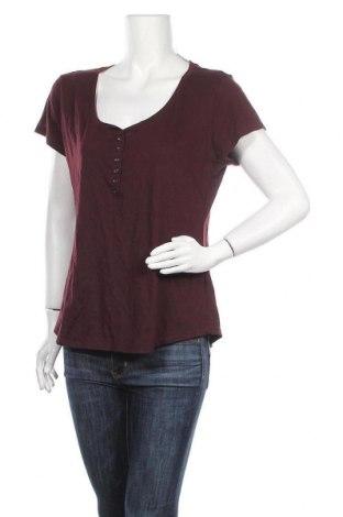 Γυναικεία μπλούζα New York & Company, Μέγεθος L, Χρώμα Κόκκινο, 65% πολυεστέρας, 35% βαμβάκι, Τιμή 20,98€