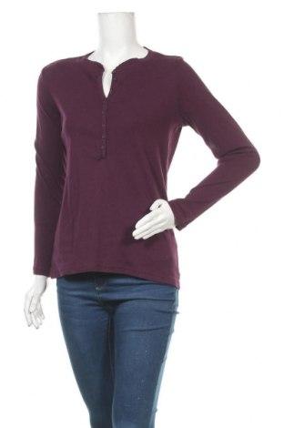 Γυναικεία μπλούζα North Route, Μέγεθος XL, Χρώμα Βιολετί, Βαμβάκι, Τιμή 3,64€