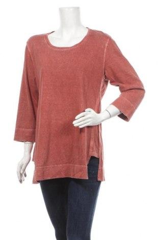 Γυναικεία μπλούζα Poetry, Μέγεθος L, Χρώμα Καφέ, 55% άλλα υφάσματα, 45% βαμβάκι, Τιμή 10,49€