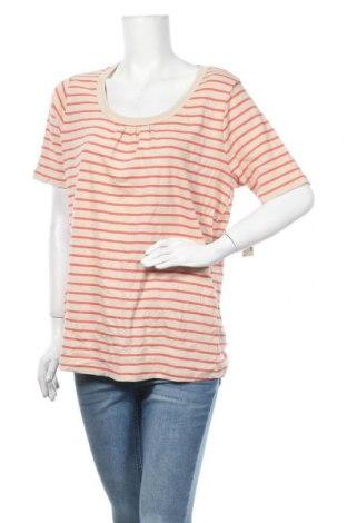 Γυναικεία μπλούζα Reitmans, Μέγεθος XXL, Χρώμα  Μπέζ, Βαμβάκι, Τιμή 14,81€