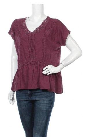 Γυναικεία μπλούζα Sonoma, Μέγεθος L, Χρώμα Βιολετί, Βαμβάκι, Τιμή 11,11€